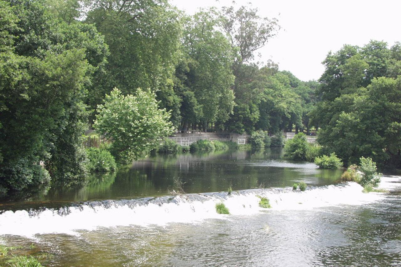 Río jardín